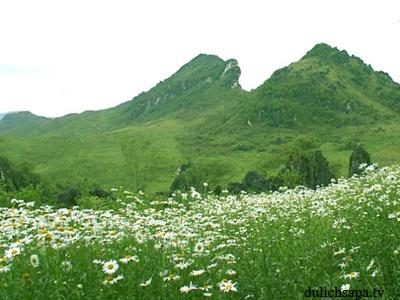 Du lịch Sapa 2 ngày khám phá núi Hàm Rồng