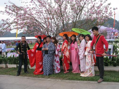 Tham dự lễ hội Hoa Anh Đào ở Hạ Long