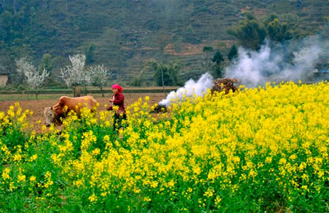 Du lịch Hà Giang thời điểm nào là tuyệt nhất?